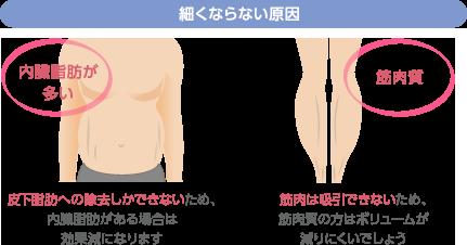 細くならない原因 内臓脂肪が多い:内臓脂肪までカニューレが到達すると、心臓などに悪影響があり修復不可能に 筋肉質:筋肉にアプローチすると、収縮して筋肉のラインがくっきり浮き出てしまいます